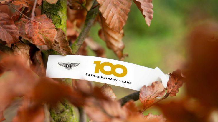 100 de ani x 100 de copaci Bentley (video)