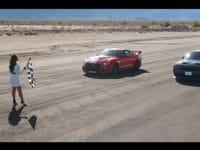 Shelby GT500 vs. lumea întreagă (video)
